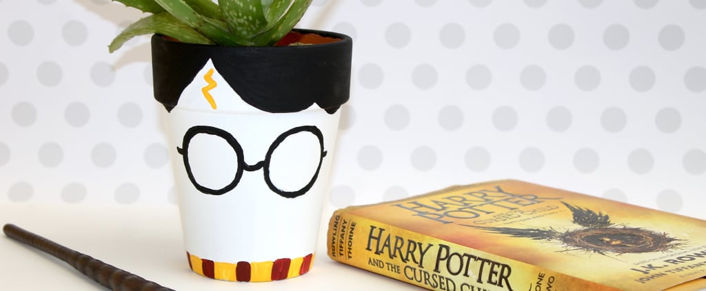 DIY Harry Potter Pot
