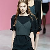 Theyskens' Theory Spring 2014
