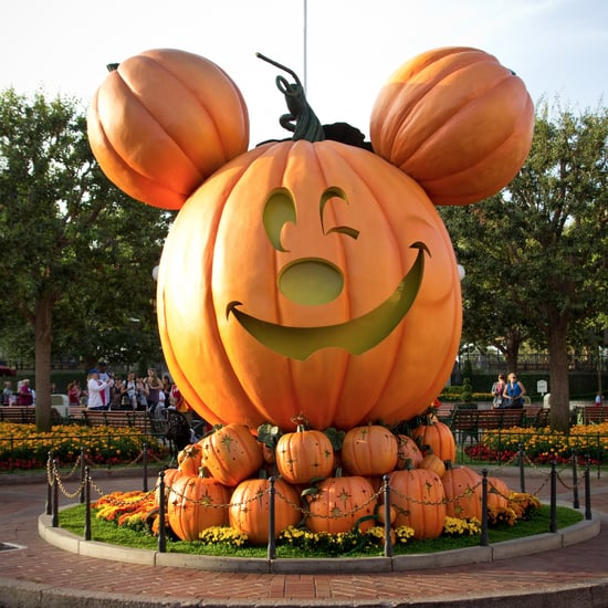 Can Adults Wear Halloween Costumes at Disneyland?