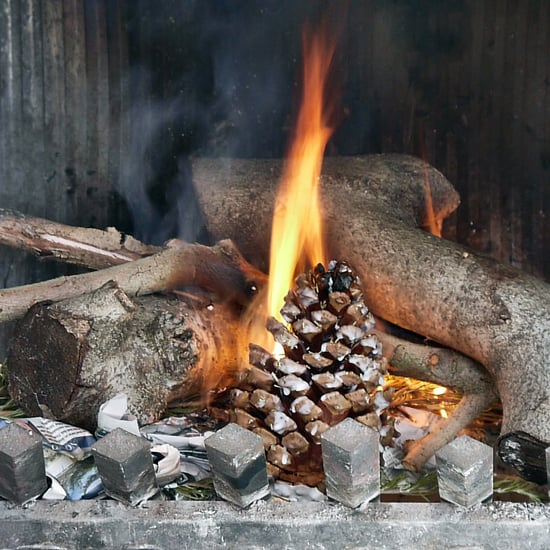 DIY Pinecone Fire Starter