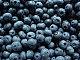 blueberry07